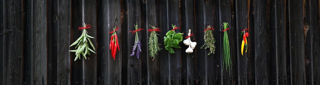 Herbs that Boost IQ